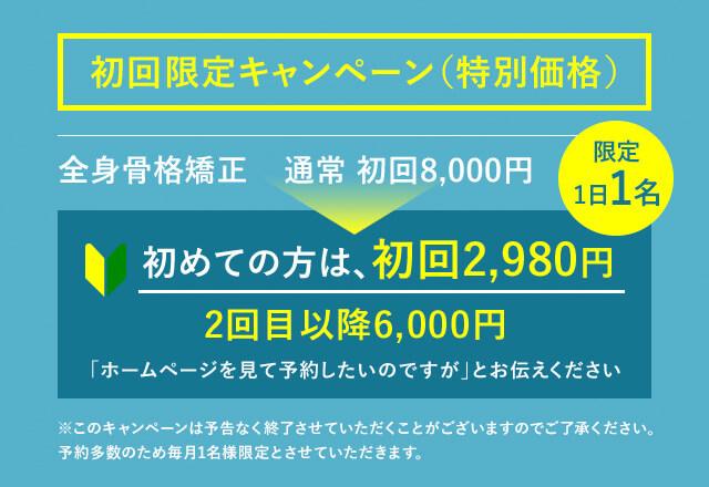 初回限定キャンペーン(特別価格)